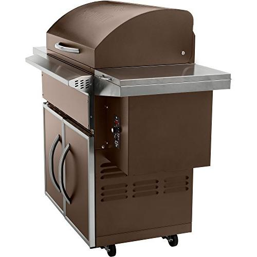 Traeger Wood Grill Smoker